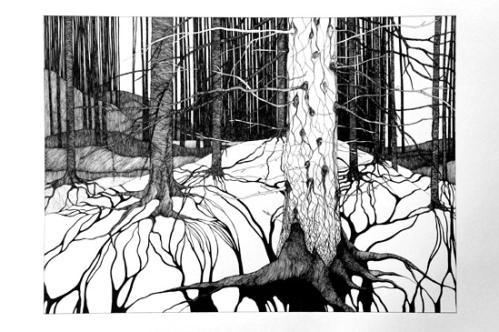 anna widen forest -01