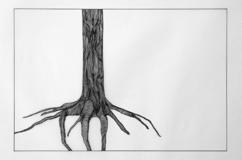 Anna Widen. Forest Artist.