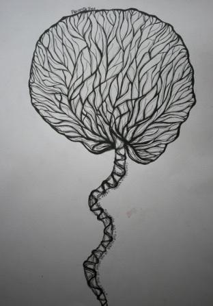 placenta tree2