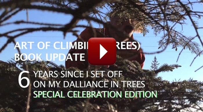 Art-of-Climbing-Trees-youtube