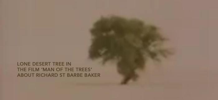Richard-St-BArbe-BAker