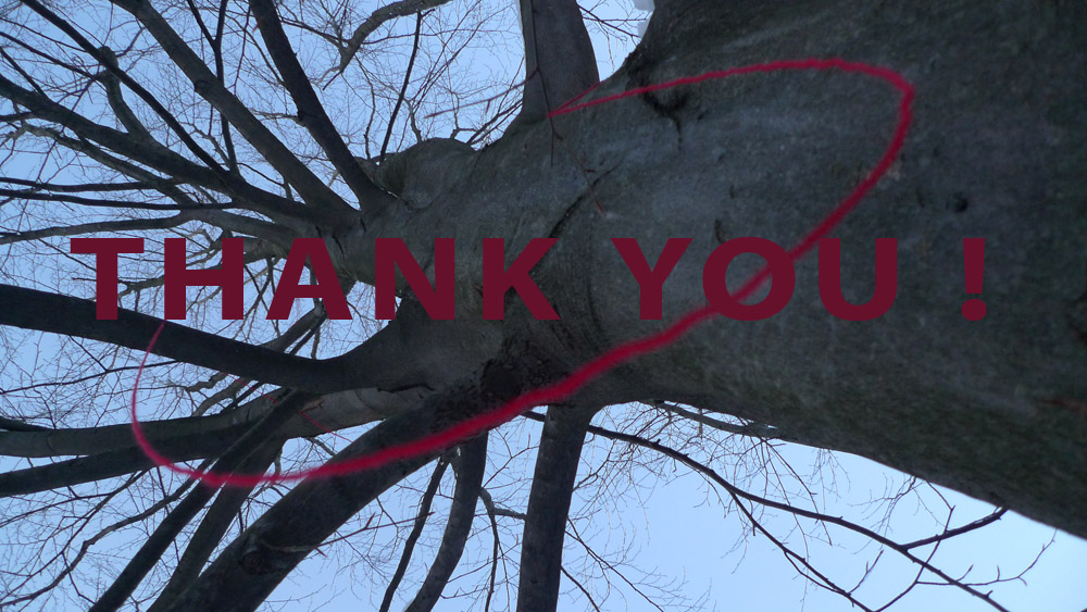 Art of Climbing Trees - thank you 04