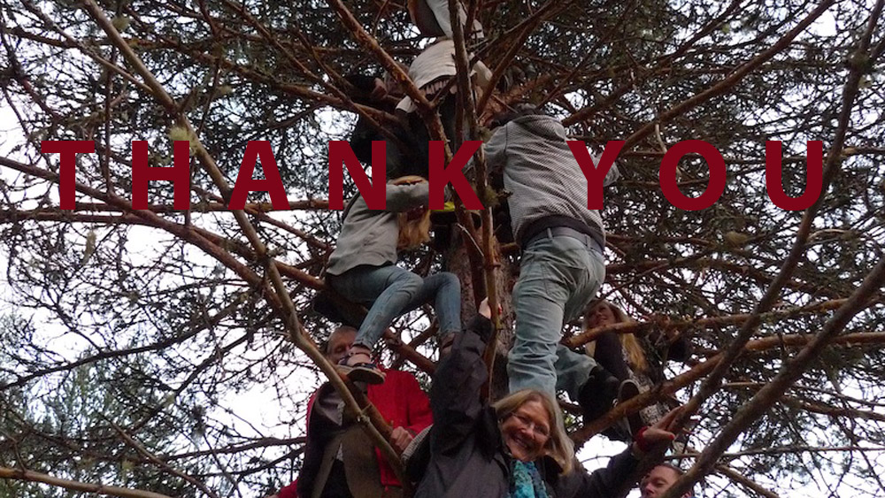 Art of Climbing Trees - thank you 08