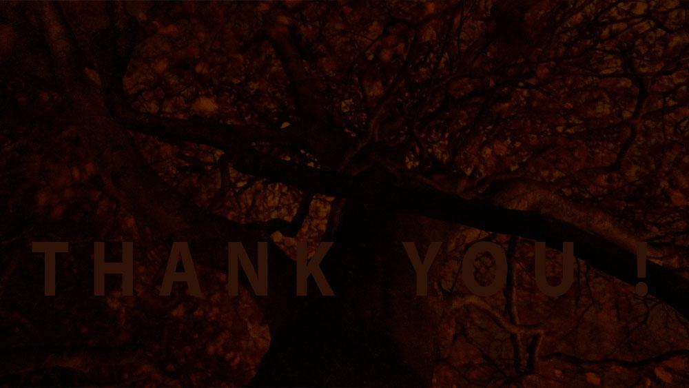 Art of Climbing Trees - thank you 15