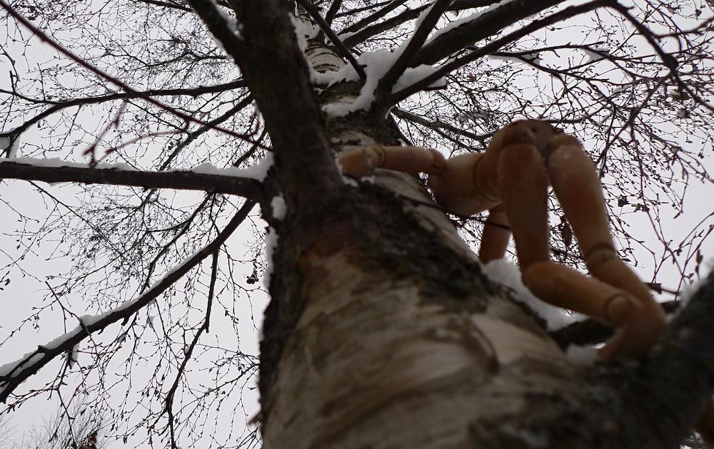 Shumu-Artofclimbingtrees-04